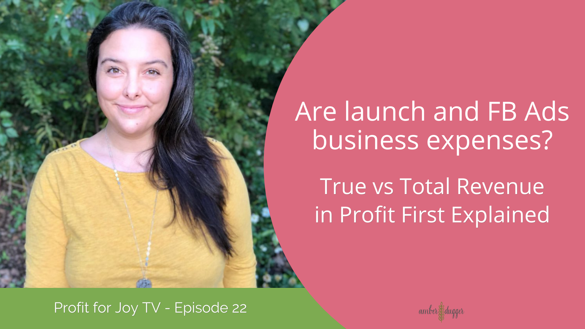 Are launch and FB Ads business expenses? True vs Total Revenue in Profit First Explained